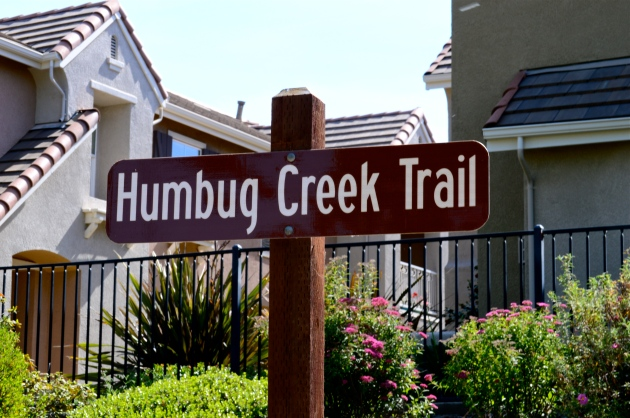 Humbug Creek Trail